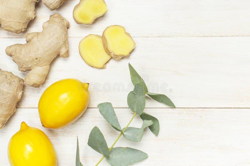 Helt och skivade den nya ingefäran rotar, eukalyptuns, citron på vitt träutrymme för kopian för den bästa sikten för bakgrund Sma arkivfoto