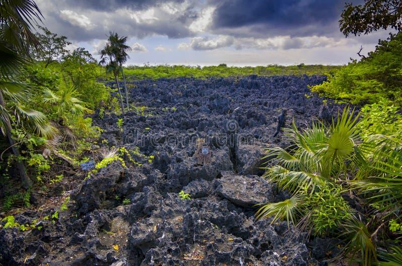 Helvete på jord arkivfoto