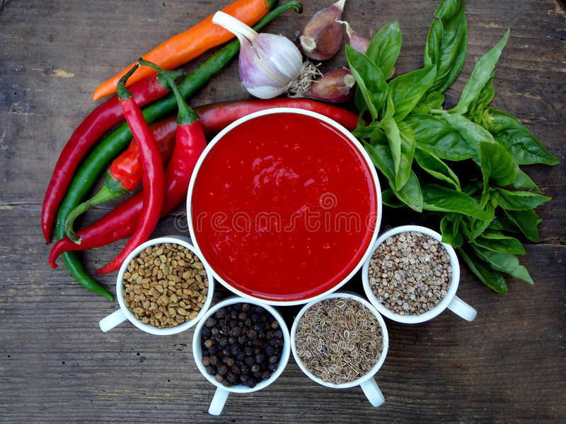 Hem- adjikasås för georgier av varm röd peppar, vitlök, basilika, valnötter, bockhornsklöver, fänkålfrö, koriander och svartpeppa arkivbild