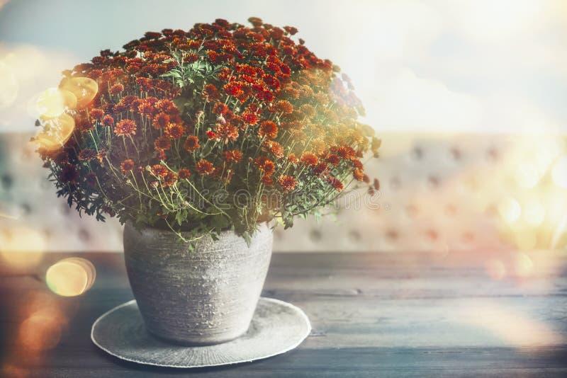 Hem- garnering för höst med vasen och blommor på tabellen, solljus royaltyfri fotografi