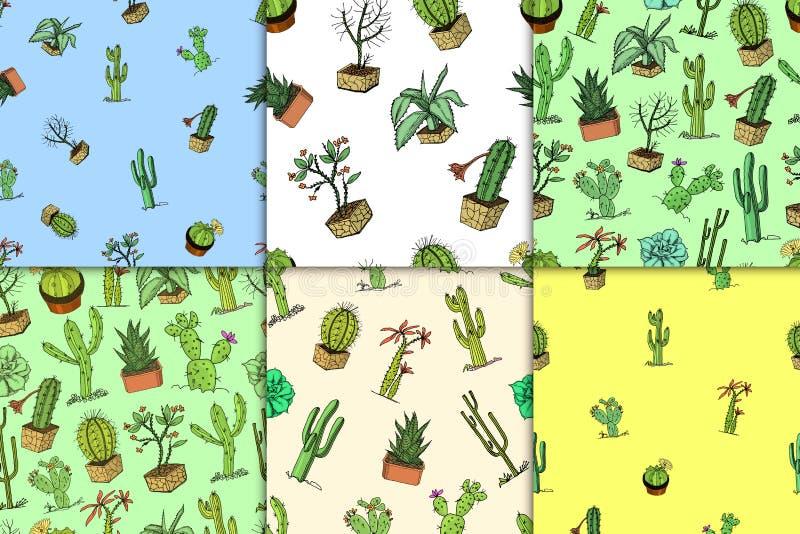 Hem- kaktusväxter med törnar och naturbeståndsdelar i krukor och blommor exotiskt eller tropiskt olika suckulenter stock illustrationer