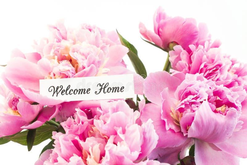 Hem- kort för välkomnande med buketten av rosa pioner fotografering för bildbyråer