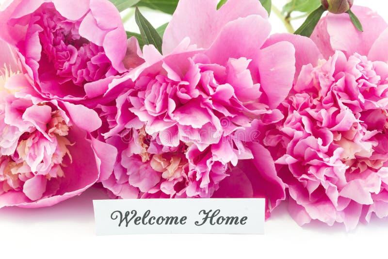 Hem- kort för välkomnande med buketten av rosa pioner arkivbild