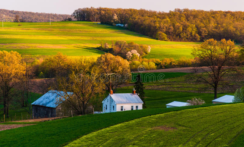 Hem och ladugård på lantgårdfälten och Rollinget Hills av sydliga York County, PA. arkivbild