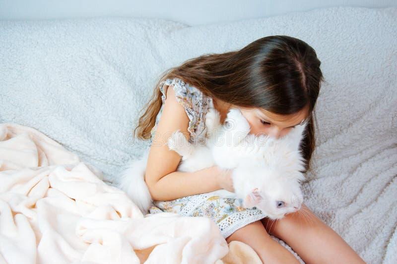 Hem- stående av lite den gulliga flickan med en vit kattFeliscatus med blåa ögon på en mjuk soffa royaltyfri foto