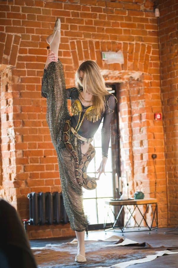 Hembra delgada que realiza danza con una serpiente en studia imágenes de archivo libres de regalías