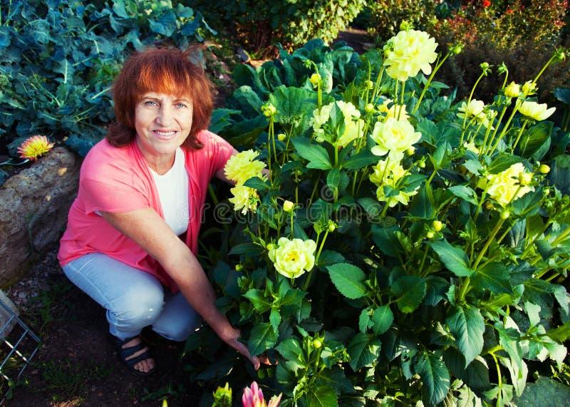 Hembra en los cuidados del jardín para las flores fotos de archivo