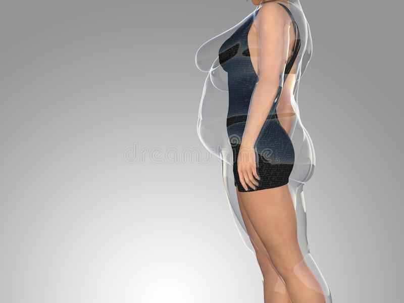 Hembra obesa gorda contra cuerpo sano del ajustado stock de ilustración
