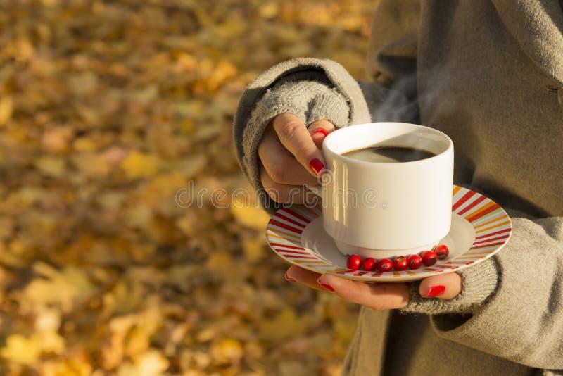 Hembra que sostiene una taza de café al aire libre fotografía de archivo