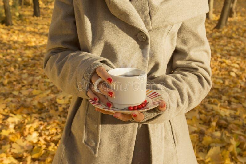 Hembra que sostiene una taza de café sólo en el bosque imagen de archivo libre de regalías