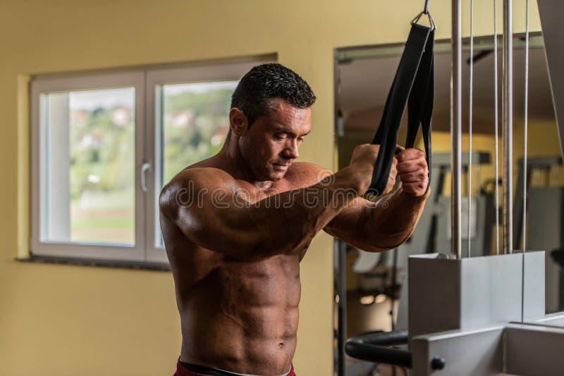 Hemdloser Bodybuilder, der für seine Übung sich vorbereitet lizenzfreie stockfotografie