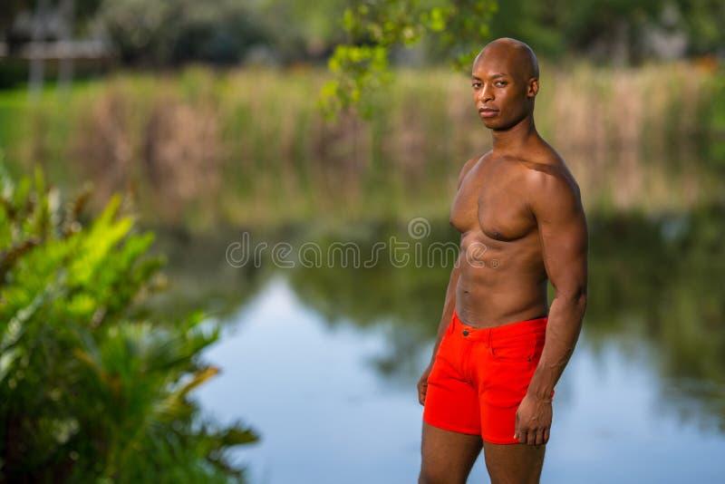 Hemdloser Mann, der im Park aufwirft lizenzfreie stockfotos