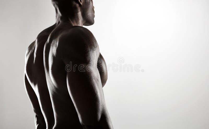 Hemdloses männliches Modell mit muskulöser Rückseite lizenzfreie stockbilder