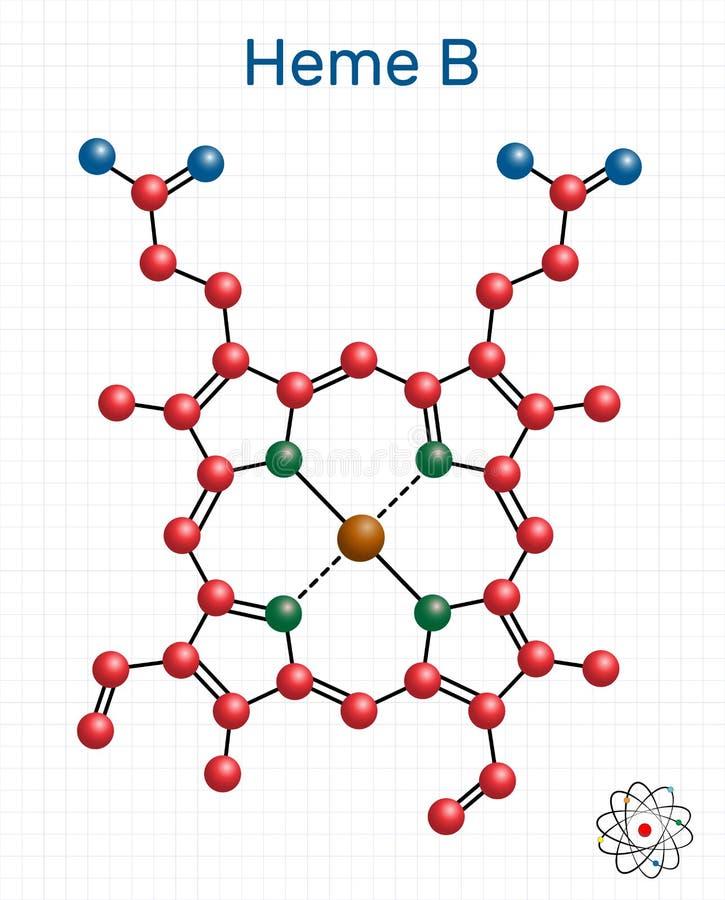 Heme B, B haem, molécula del protoheme IX Es componente de las familias de la hemoglobina, de la mioglobina, de la peroxidasa y d ilustración del vector