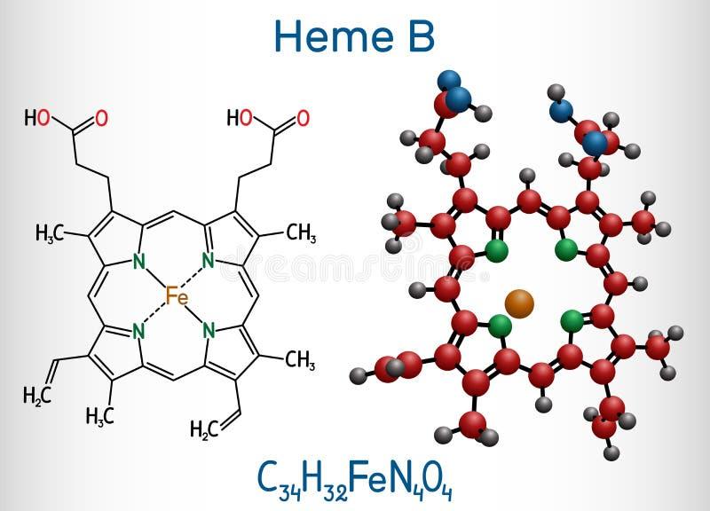 Heme B, haem B, molekyl för protoheme IX Det är delen av hemoglobin-, myoglobin-, peroxidase- och cyclooxygenasefamiljer av enzym royaltyfri illustrationer