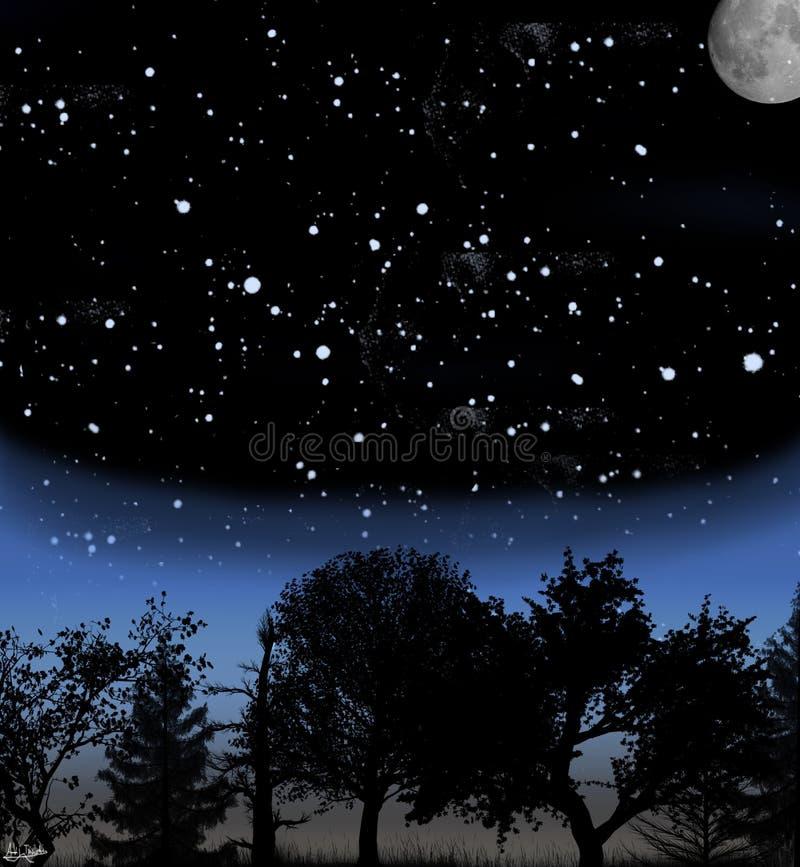Hemel bij nacht vector illustratie