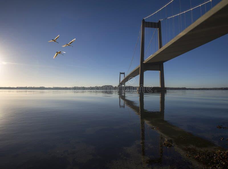 Hemel blauwe Deense hangbrug stock fotografie