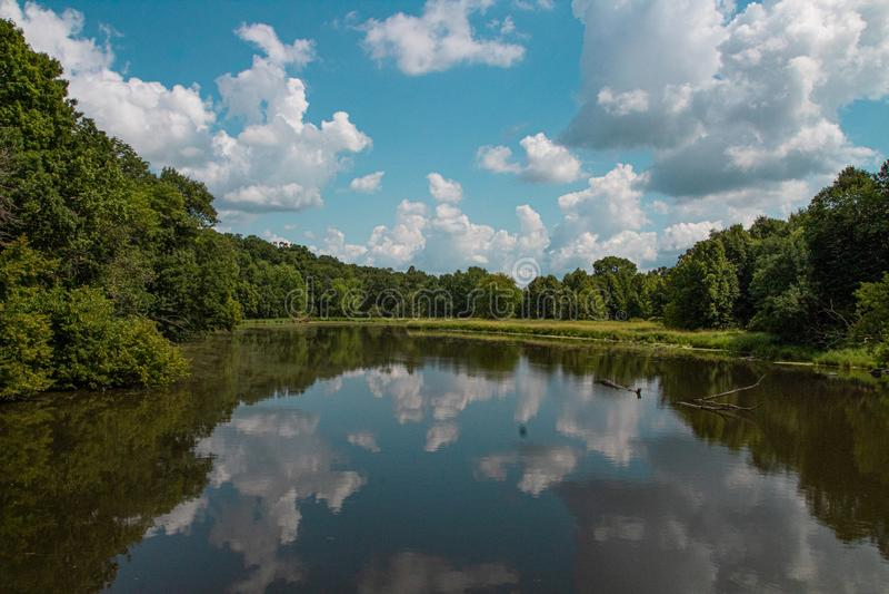 Hemel in de rivier in het hout wordt weerspiegeld dat stock afbeeldingen