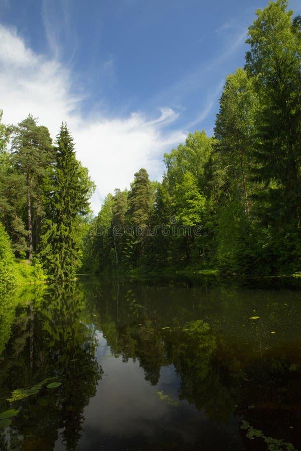 Hemel in de rivier van reflextion royalty-vrije stock foto