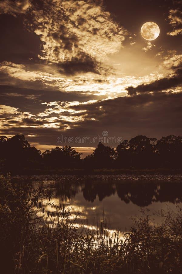 Hemel met donkere bewolkt en volle maan boven silhouetten van bomen stock foto