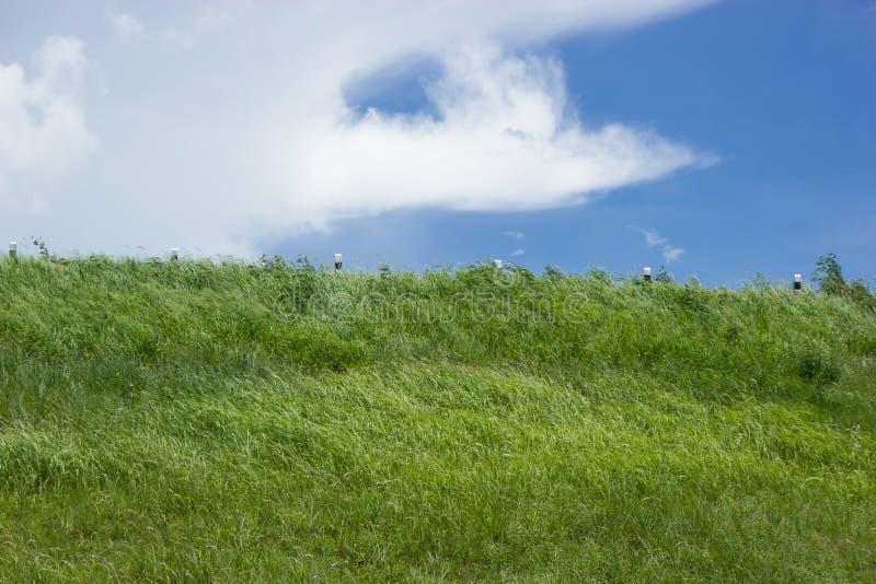 Hemel met groene gebieden stock fotografie