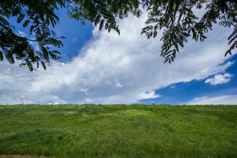 Hemel met groene gebieden stock foto