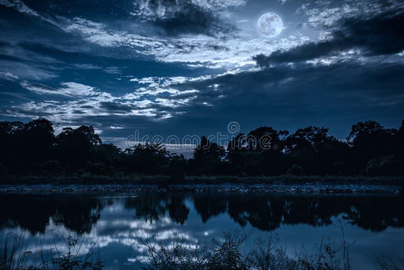 Hemel met vele ster en volle maan boven silhouetten van bomen en stock foto's