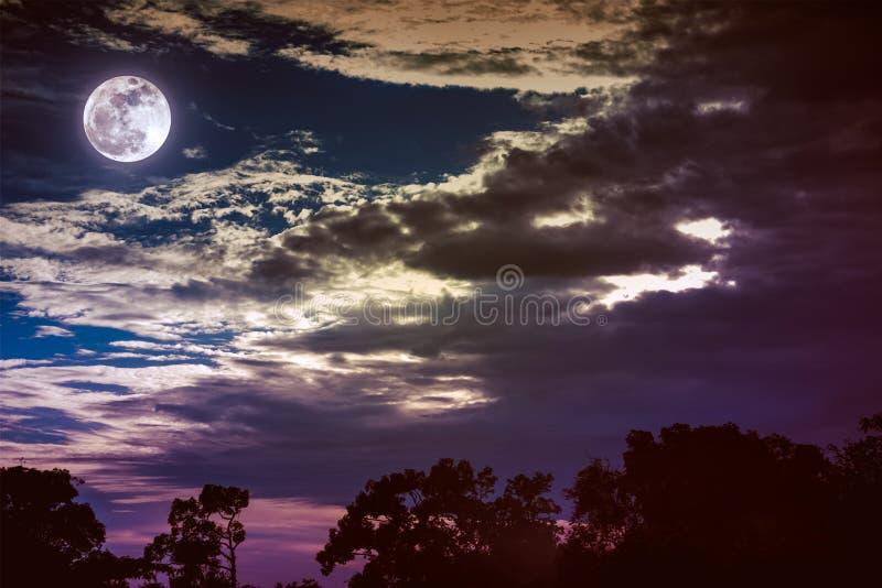 Hemel met wolken en maan boven silhouetten van bomen Sereniteitsna stock afbeelding