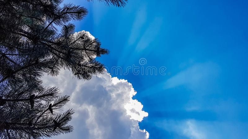 Hemel met wolken en zonstralen stock foto