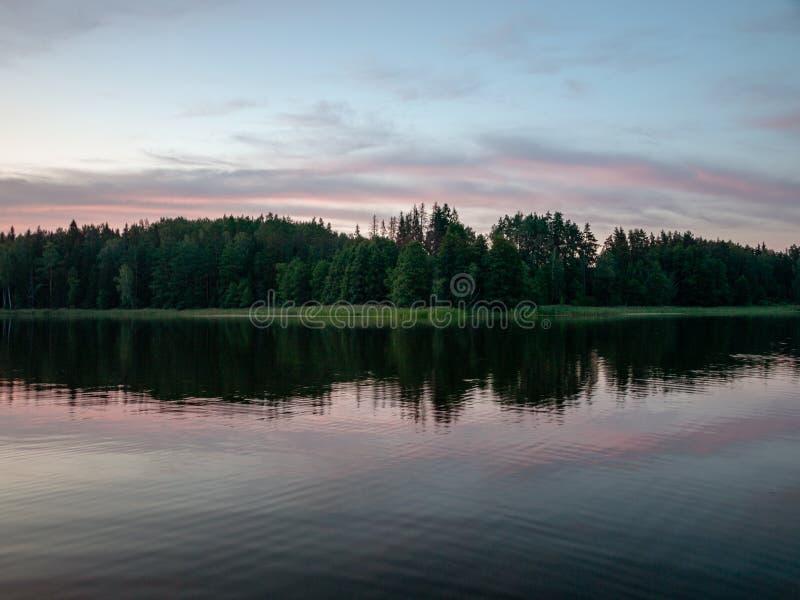 Hemel na zonsondergang, donker bossilhouet stock foto
