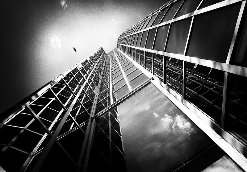 Hemel, vogel en glasvensters van een modern gebouw in Zagreb, Kroatië stock foto