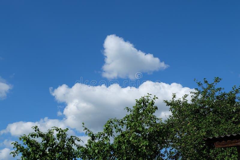 Hemel, wolken & bladeren royalty-vrije stock afbeelding