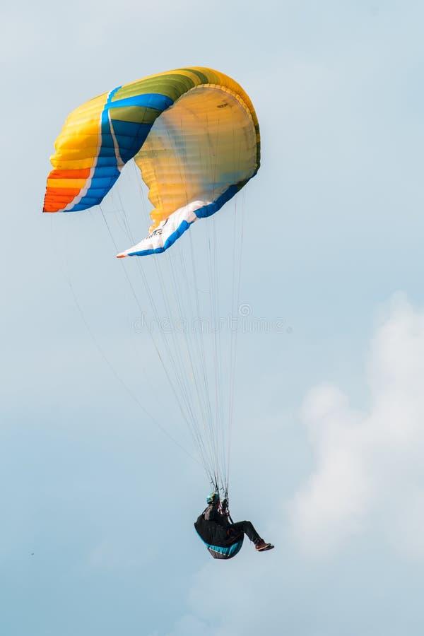 Hemelduiker die over de bergen vliegen stock afbeelding