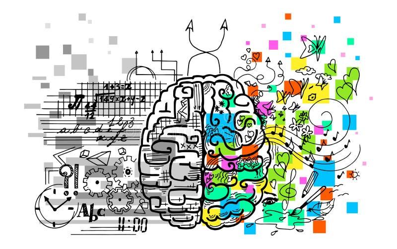Hemisferios del cerebro ilustración del vector