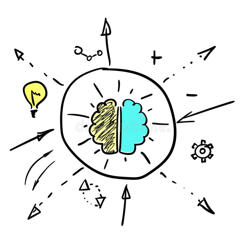 Hemisferios izquierdos y derechos del cerebro ilustración del vector
