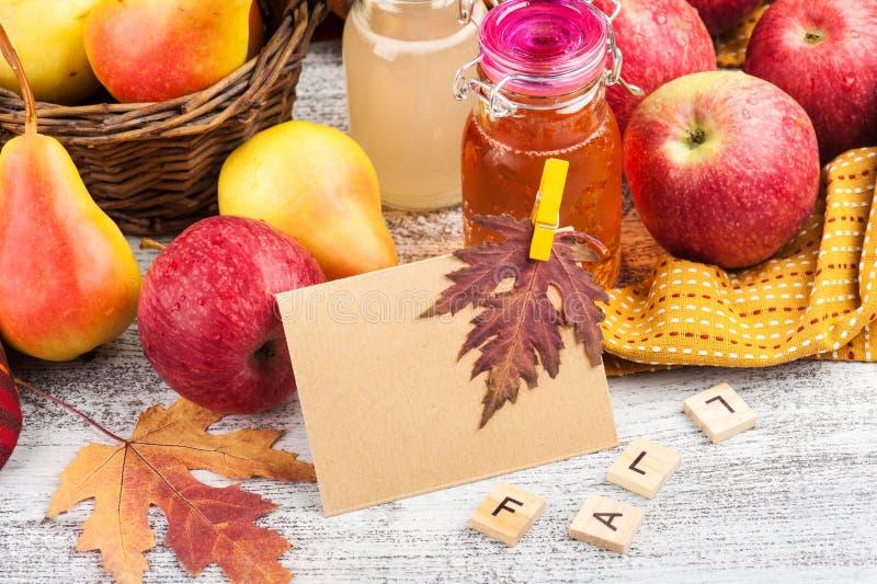 Hemlagad äpplepäronäppeljuice royaltyfri foto