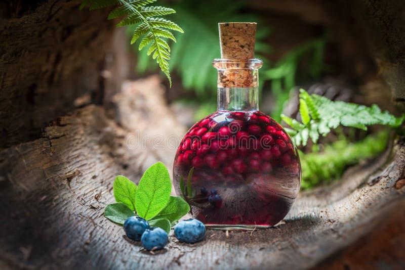 Hemlagad likör som göras av blåbär och alkohol arkivfoto