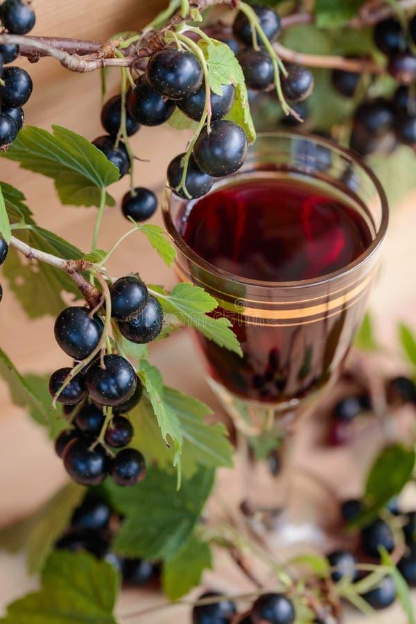 Hemlagad likör som göras från svarta vinbär och nya bär royaltyfri fotografi