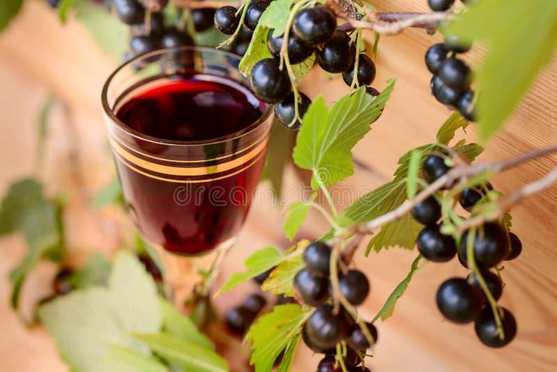 Hemlagad likör som göras från svarta vinbär och nya bär royaltyfri foto