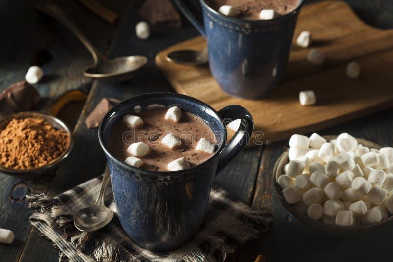 Hemlagad mörk varm choklad royaltyfri foto