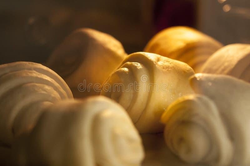 Hemlagad matlagning för italienareoljabröd in i ugnen royaltyfria bilder