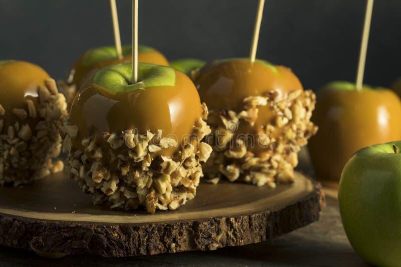 Hemlagad organisk godis Taffy Apples royaltyfria bilder
