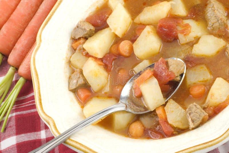 hemlagad stew för nötkött royaltyfria bilder