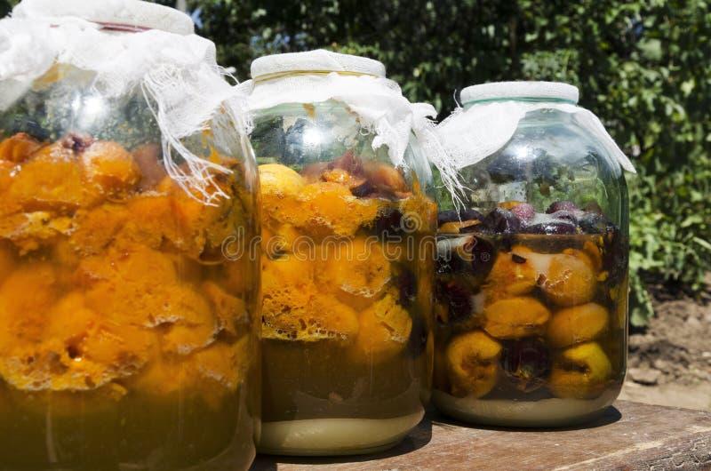 Hemlagad tinktur som göras av aprikons, pulm Flaskor som är fulla av söta frukter, socker Process av jäsning fotografering för bildbyråer