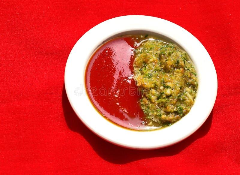 Hemlagad traditionell ny grön chilisås royaltyfri foto