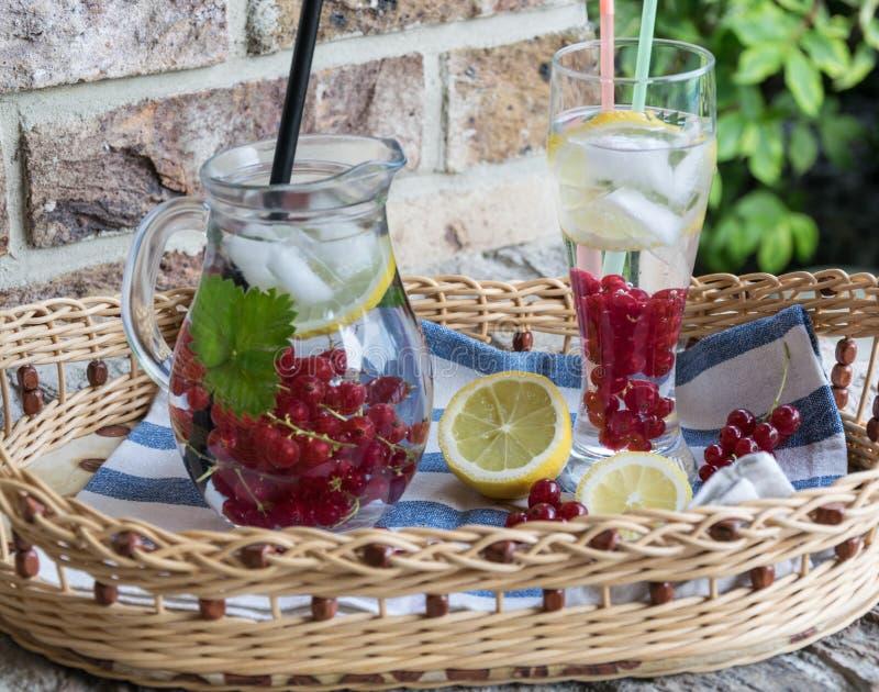 Hemlagad uppfriskande lemonad av den röda vinbäret med is och citronen royaltyfri bild