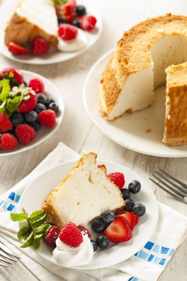 Hemlagade Angel Food Cake royaltyfri bild