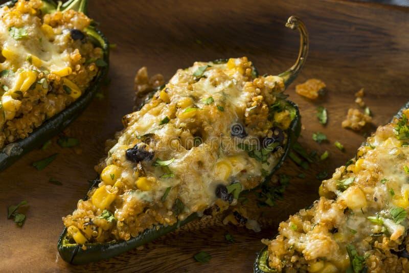 Hemlagade grillade välfyllda Poblanopeppar för Quinoa arkivfoton