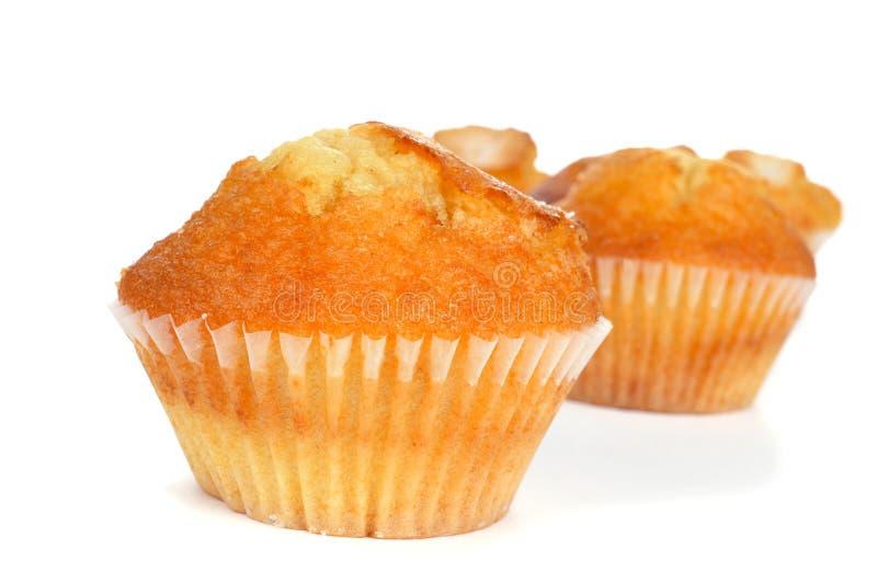 Hemlagade magdalenas, typisk spanjor plattar till muffin royaltyfria bilder