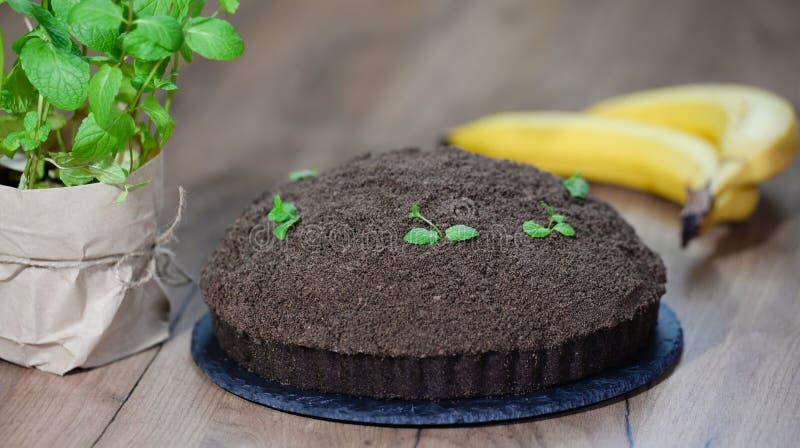 Hemlagade Mink Mole Hole Cake med den chokladkexet, bananen och gr?ddost royaltyfri fotografi